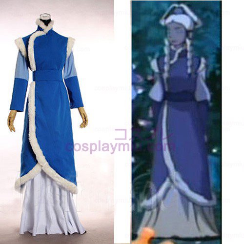 Avatar The Last Airbender Cosplay Costume