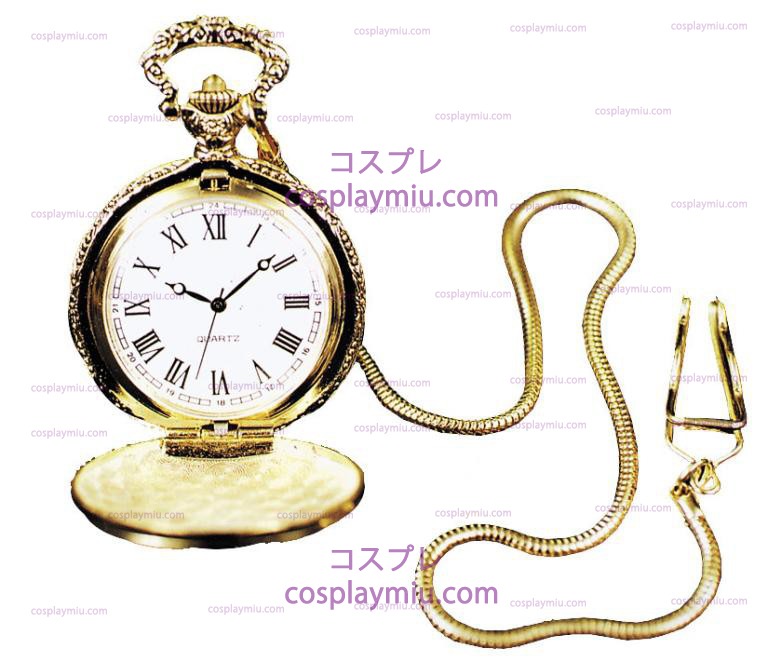 Pocket Watch Case w/Chain